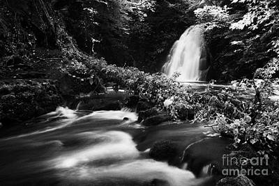 Gleno Or Glenoe Waterfall Beauty Spot County Antrim Northern Ireland Print by Joe Fox