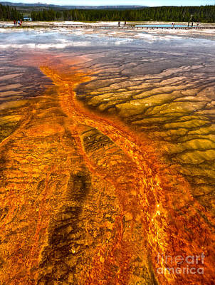 Grand Prismatic Spring In Yellowstone National Park - 02 Art Print by Gregory Dyer