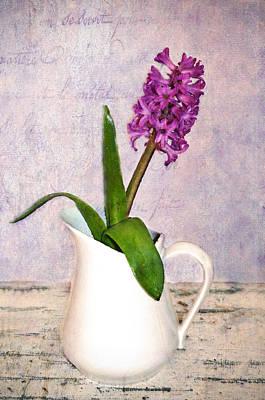 Hyacinth Print by Kathy Jennings