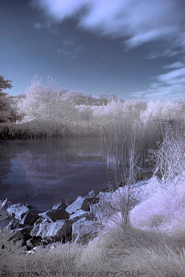 Art Print featuring the photograph  Infrared Pond by Beverly Cash