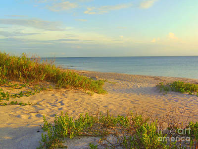 Photograph -  Longboat Key Beach View by Lou Ann Bagnall
