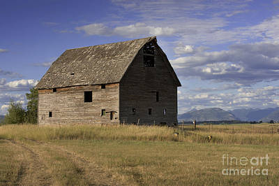 Photograph -  Old Big Sky Barn by Sandra Bronstein