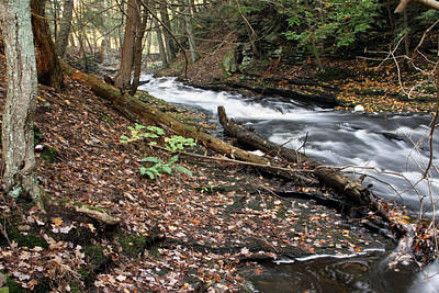 River Below Grayville Falls 2 Art Print
