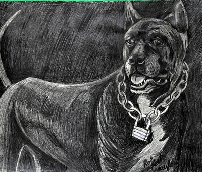Rottweiler Dog Drawing -  Scarface The Guard Dog by Bob Crawford