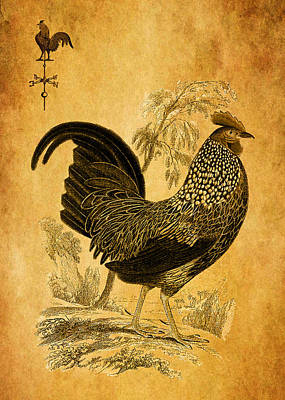 Thanksgiving Rooster Art Print by Sarah Vernon
