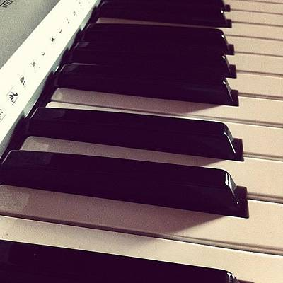 Instrument Photograph - « The Keys Play And The Music Roars » by Rena Thdreamer