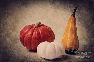 Culinary Mixed Media -  Three Pumpkins by Angela Doelling AD DESIGN Photo and PhotoArt