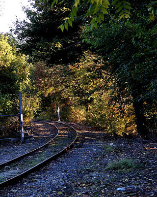 Photograph -  Tracks Into Autumn by Barry Doherty