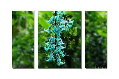Turquoise Jade Vine  Art Print by Elaine Manley