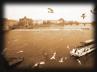 Vltava River Original