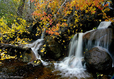 Art Print featuring the photograph  Waterfall by Mitch Shindelbower