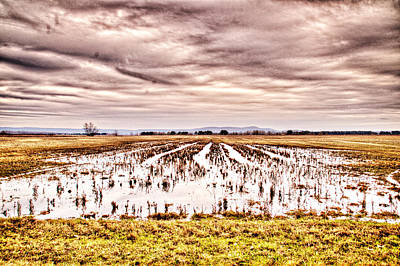 0704-8703 Winter Clouds At Holla Bend Wildlife Refuge Art Print by Randy Forrester