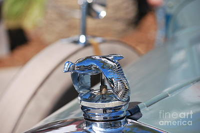 Photograph - 1930 Ford Coupe Hood Ornament by Heather Kirk