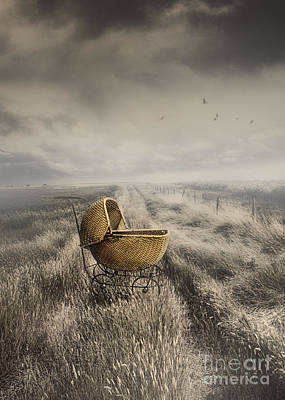 Abandoned Antique Baby Carriage In Field Art Print by Sandra Cunningham
