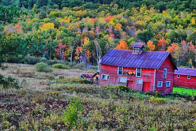 Photograph - Adirondack Charm  by Emily Stauring