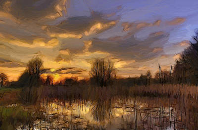 Swamp Oil Painting - After The Rain by Steve K