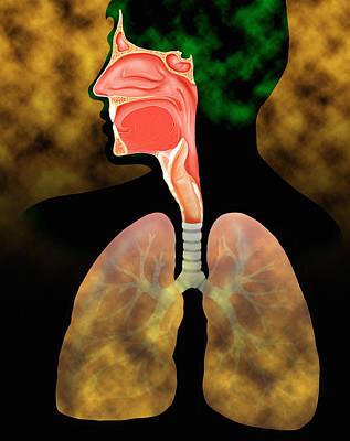 Air Pollution Art Print by David Gifford