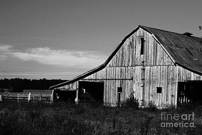 Photograph - Along The Rural Road by Julie Clements