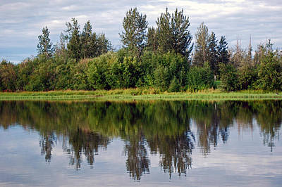 Photograph - Along The Tanana by Harvey Barrison
