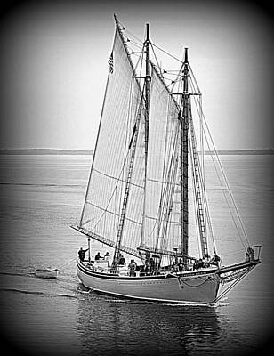 Photograph - American Eagle Sail by Doug Mills