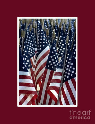 Photograph - American Flags by Nancy Greenland
