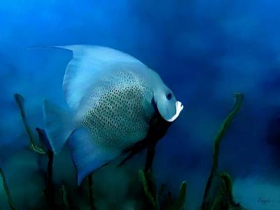 Art Print featuring the digital art Angelfish by John Pangia
