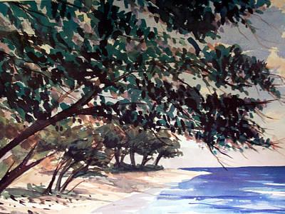 Anini Beach Art Print by Jon Shepodd