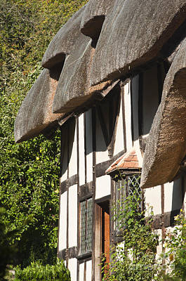 Stratford Photograph - Anne Hathaway's Cottage by Andrew  Michael