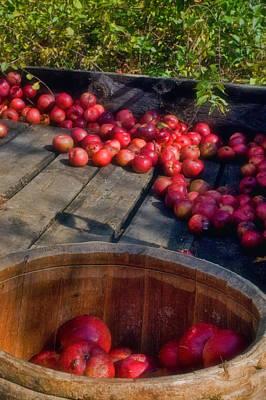 Apple Picking Print by Joann Vitali
