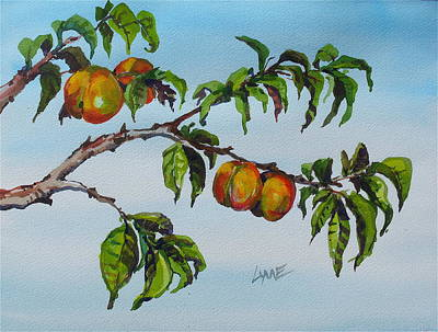 Painting - Apricots by Lynne Haines