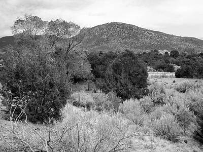 Photograph - April New Mexico Desert - Black And White by Kathleen Grace