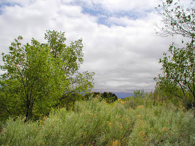 Photograph - April New Mexico by Kathleen Grace