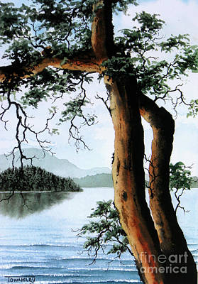 Painting - Arbutus by Frank Townsley