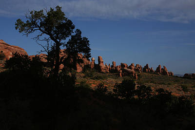 Photograph - Arches National Park by Benjamin Dahl