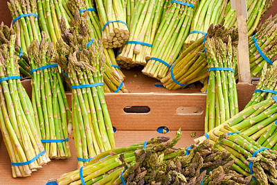 Asparagus Art Print by Tom Gowanlock