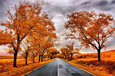 Autumn - 4 Art Print by Okan YILMAZ