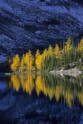 Autumn, Alpine Larch Trees, Lake Agnes Art Print by John Sylvester