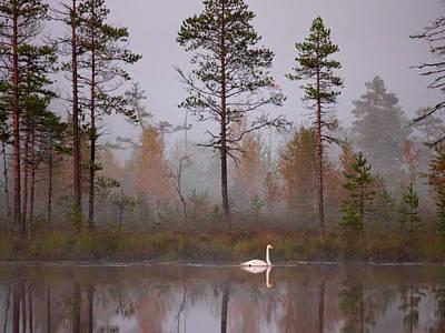 Jouko Lehto Royalty-Free and Rights-Managed Images - Autumn by Jouko Lehto