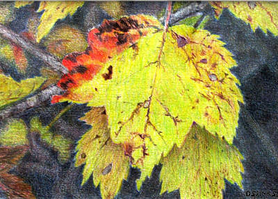 Painting - Autumn Leaves by Debra Spinks