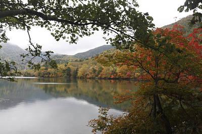 Photograph - Autumn by Masami Iida