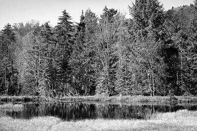 Black And White Photograph - Autumn Reflections by David Patterson
