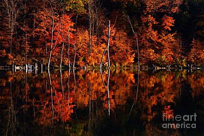 Photograph - Autumn Reflections by Larry Ricker