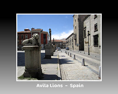 Photograph - Avila Lions Spain by John Shiron