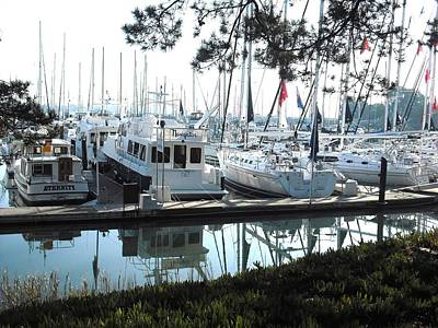 Photograph - Ballena Bay Alameda by Kelly Manning