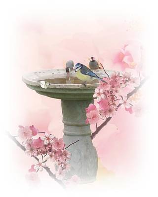 Cherry Blossoms Digital Art - Bath Time by Sharon Lisa Clarke