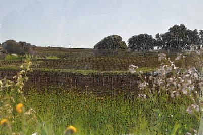Vineyard Digital Art - Beautiful California Vineyard Framed With Flowers by Brandon Bourdages
