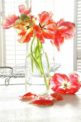Beautiful Tulips In Old Milk Bottle  Art Print by Sandra Cunningham