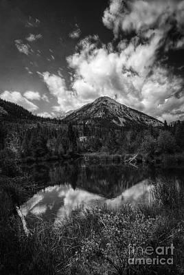 Photograph - Beaver Pond Reflection by David Waldrop