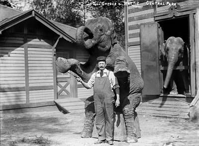 1900s Portraits Photograph - Bill Snyder, Elephant Trainer by Everett