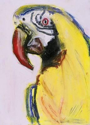 Bird Portrait 1 Art Print by Iris Gill
